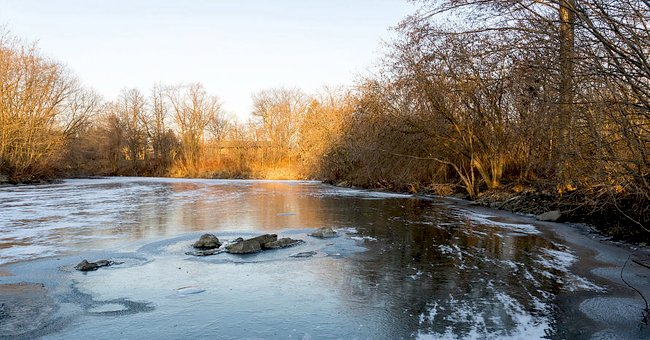 Arkansas Man, 69, Tragically Dies Attempting to Save His Beloved Calf from a Frozen Pond