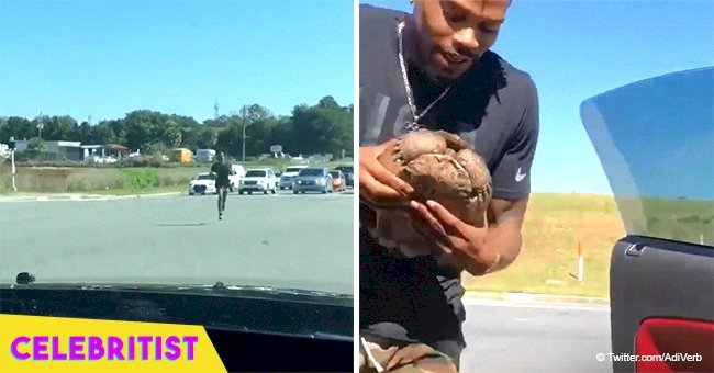 US gold medalist rushing into busy intersection so that he can save a tortoise still touches hearts