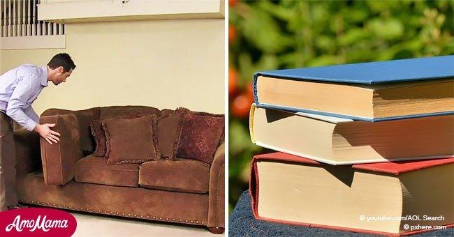 das passiert wenn eine fliege auf das essen landet es ist schlimmer als sie es sich denken. Black Bedroom Furniture Sets. Home Design Ideas