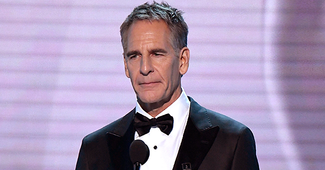 Scott Bakula of NCIS Was Once Harassed by a Woman Convicted of Threatening Actor Michael J Fox