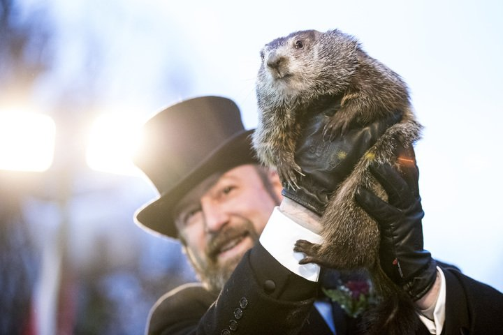 Groundhog Phil being shown to the crowd | Photo: Getty Images
