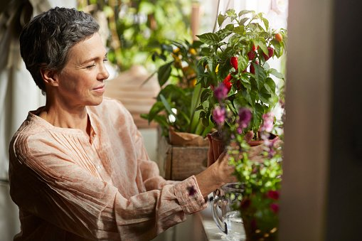 Photo of mature woman nurturing plants in living room | Photo: Getty Images