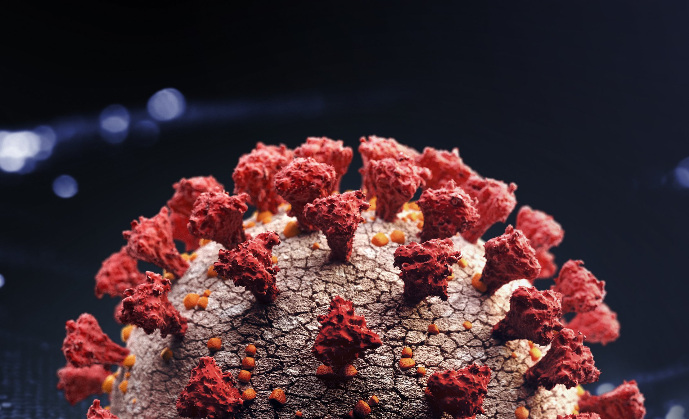 Close up photo of the novel Corona virus | Photo: Getty Images