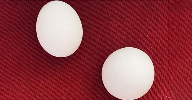 College Students Found Perfectly Round Egg That Is Now a Viral Sensation —Take a Look