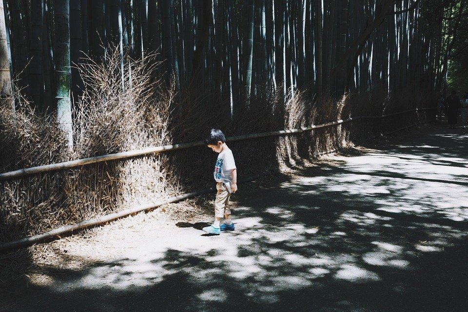 Niño solo-Imagen tomada de Pixabay