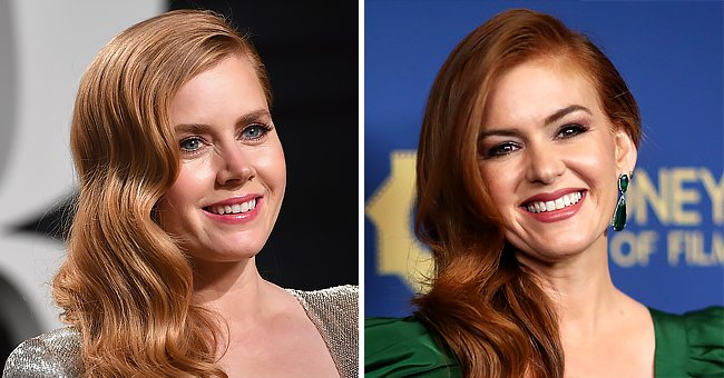 Isla Fisher and Amy Adams Look Nearly Identical — the Actresses Get Confused So Often