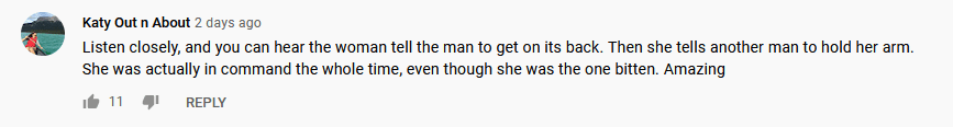 A user's comment on the viral video | Photo: youtube.com/globalnews