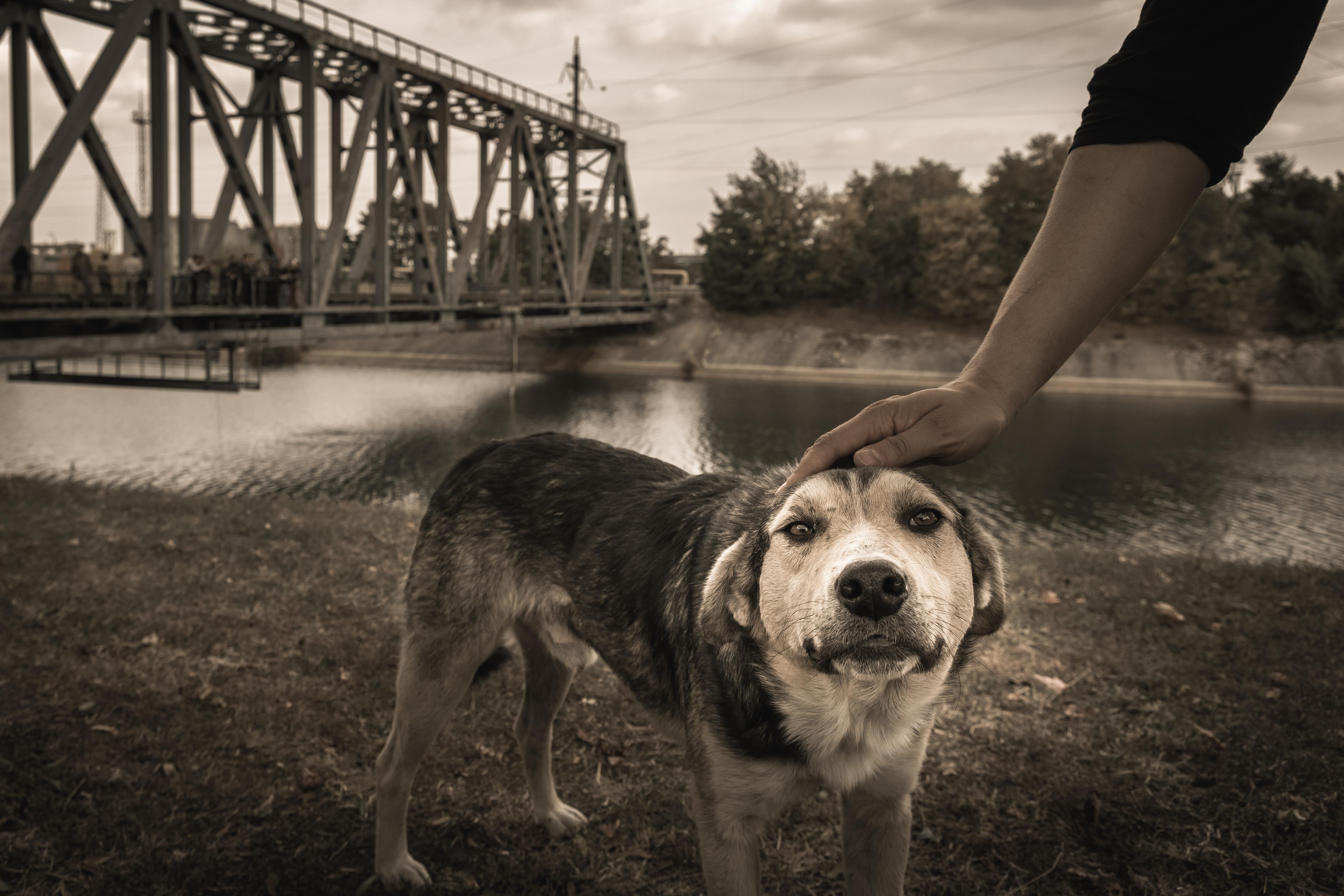 Image Credits: Shutterstock
