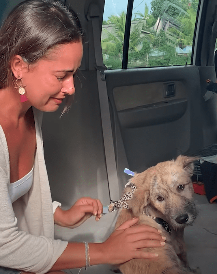 Woman says goodbye to the dog she rescued   Photo: Facebook/The Dodo