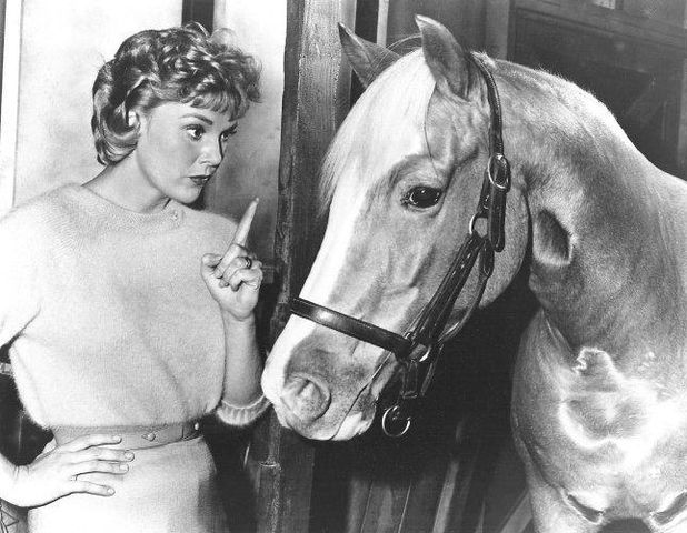 "Connie Hines in ""Mister Ed"" in 1963. 