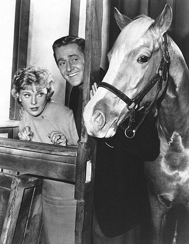 "Connie Hines and Alan Young in ""Mister Ed."" 