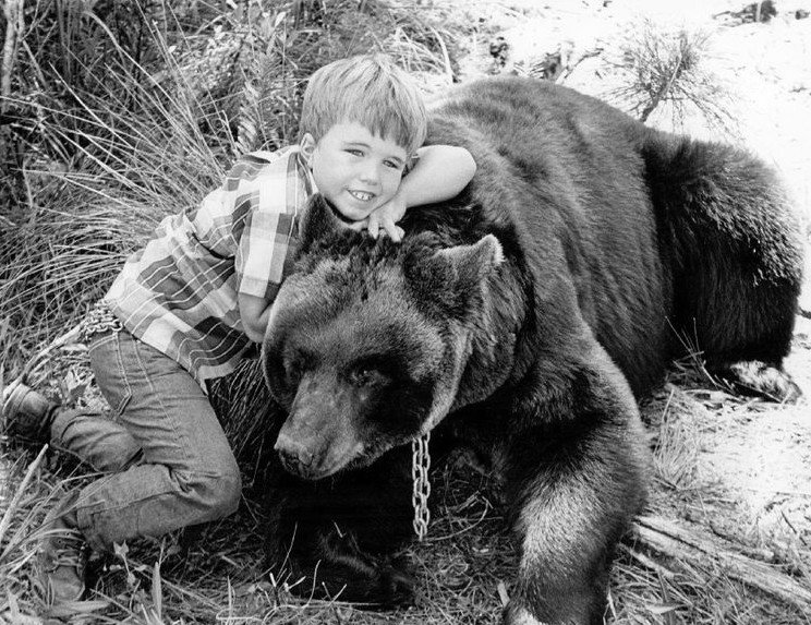 "Clint Howard and Bruno the Bear in ""Gentle Ben"" 