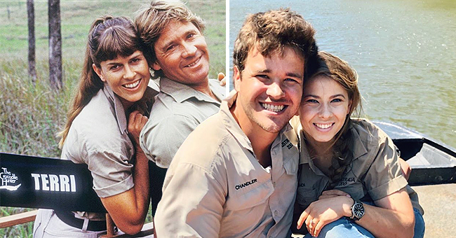 Us Weekly: Terri Irwin Met 'Crocodile Hunter' Steve the Same Way Daughter Bindi Irwin Met Fiancé Chandler Powell