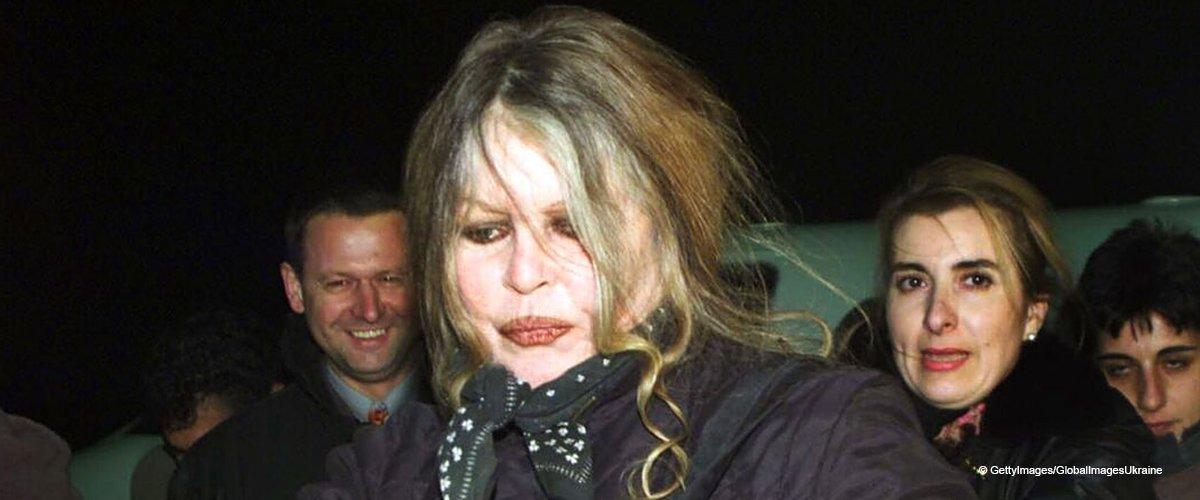 """Furieuse, Brigitte Bardot accuse les Réunionnais de """"réminiscence de cannibalisme"""""""