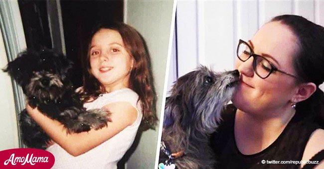 Eine Frau adoptierte einen süßen alten Hund und fand heraus, dass es ihr Hund aus Kindheit war
