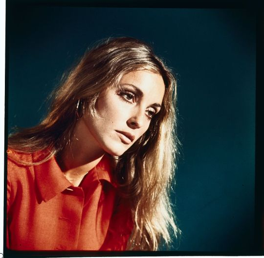 Sharon Tate. | Imagen: Getty Images