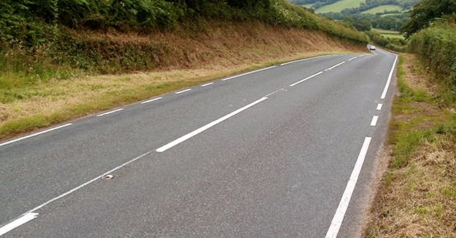 Daily Joke: A Man Gets the Job of Painting a Road