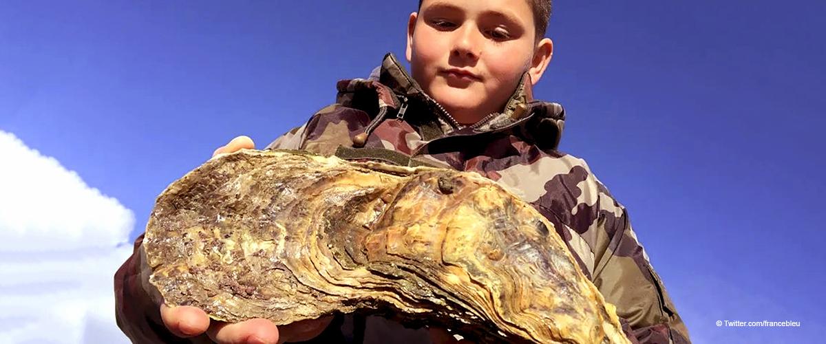 """Une découverte inattendue en Vendée : le fils d'un ostréiculteur a trouvé une huître """"oubliée"""" de plus de 30 ans"""