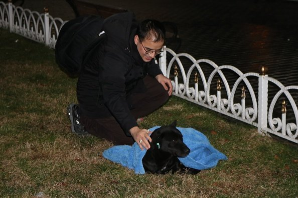 Huseyin Yurtseven seen covering a black dog with a blanket to keep it warm through the cold night in Istanbul, Turkey. | Photo: Getty Images