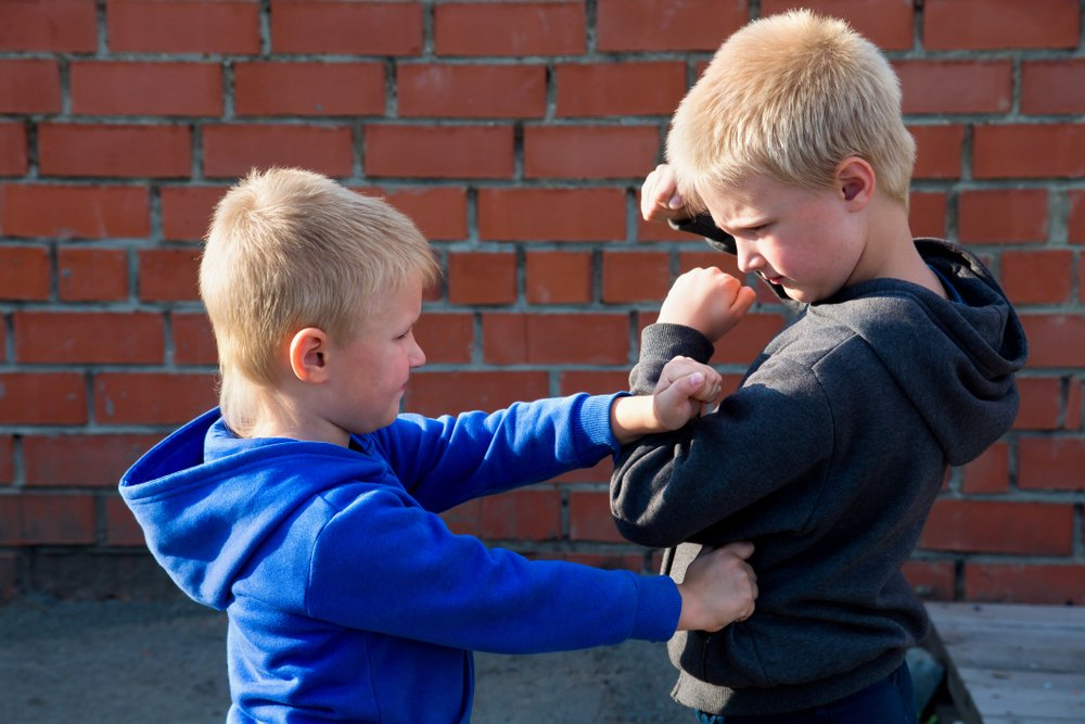 Deux enfants qui se battent  Photo : Shutterstock