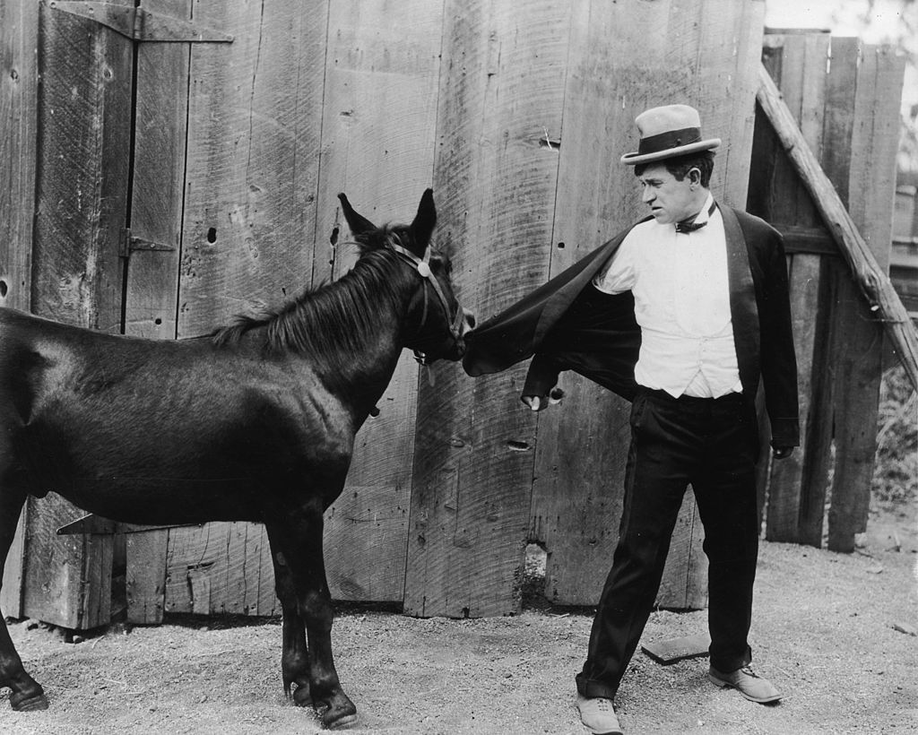 Will Rogers (1879-1935) looks behind as a mule bites his jacket in an unidentified film still | Photo: Getty Images