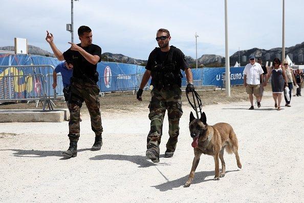 gendarme avec des chiens | Source : Getty Images