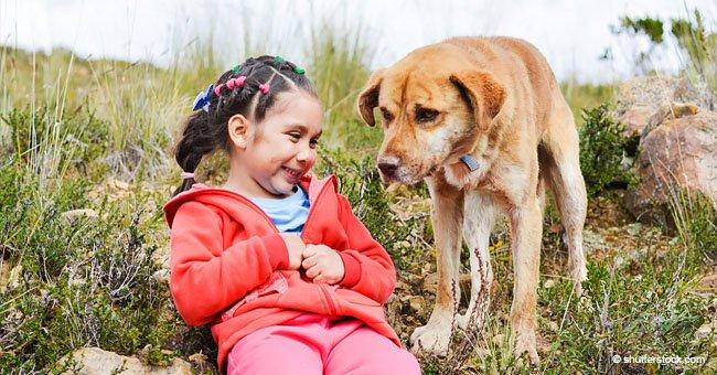 Dos perros muestran asombrosa reacción salvando vidas de pequeños niños de menos de 6 años