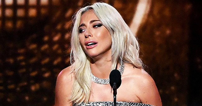 Lady Gaga's Dog Walker Hospitalized after Getting Shot, 2 of Her Dogs Were Stolen – Details