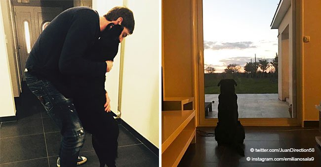 La sœur d'Emiliano Sala donne des nouvelles de Nala, le chien bien-aimé de son frère