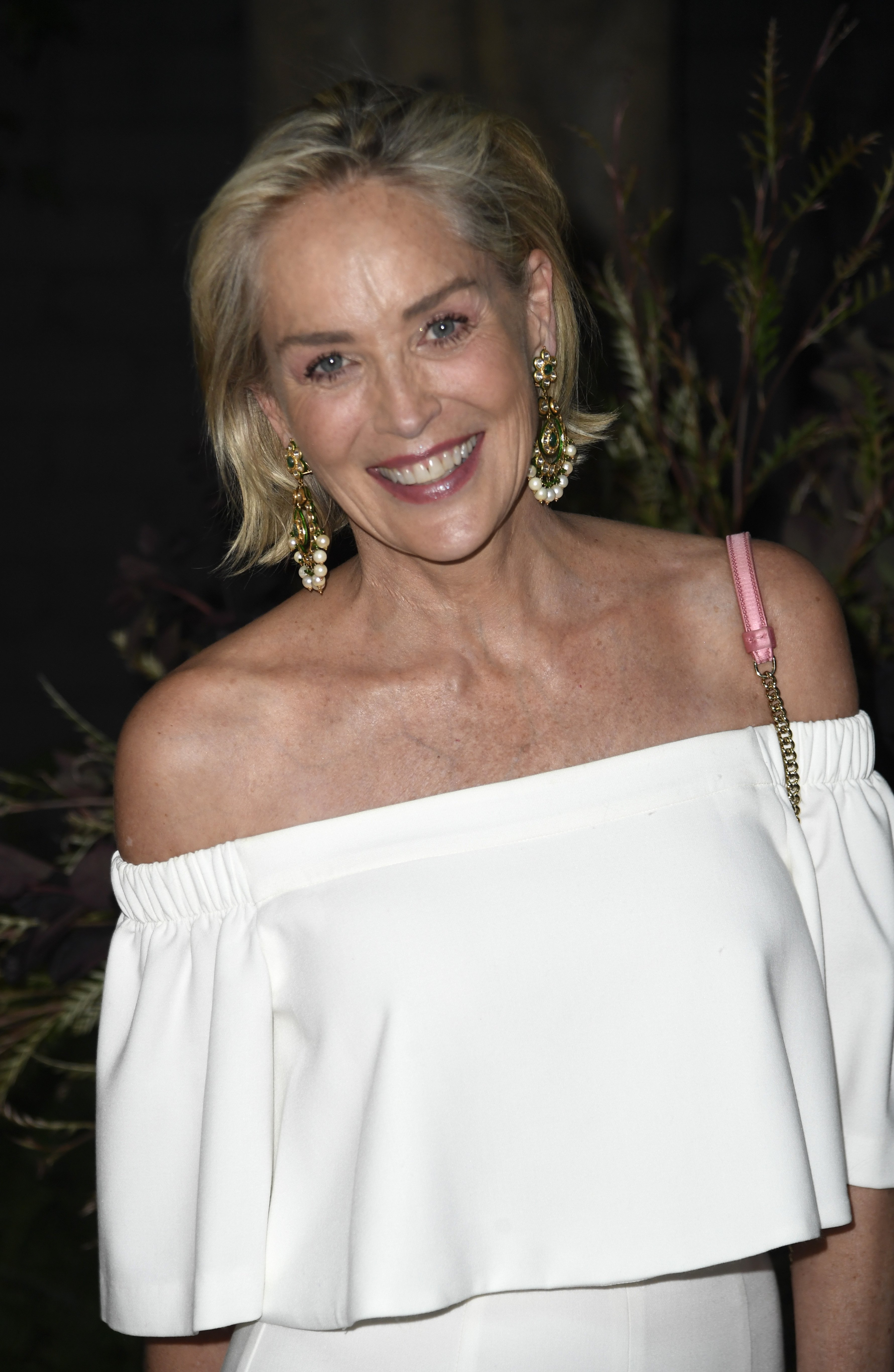 Sharon Stone attends the Brain Health Initiative 100th Anniversary Of Women's Suffrage Gala at Eric Buterbaugh Los Angeles on July 17, 2019, in Los Angeles, California. | Source: Getty Images.