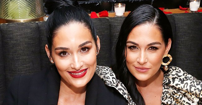 Nikki Bella's Engagement to Coinciding Births — Look Back at the Bella Twins' Biggest Year