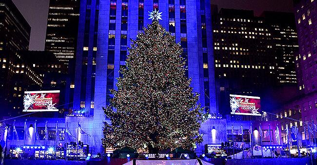 Rockefeller Center's Christmas Tree Has Been Chosen - Meet This Year's Holiday Symbol