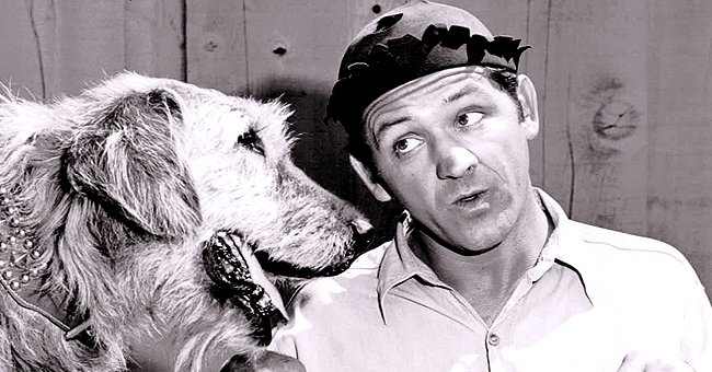 George Lindsey Played Goober Pyle on 'The Andy Griffith Show' — inside the Iconic Role