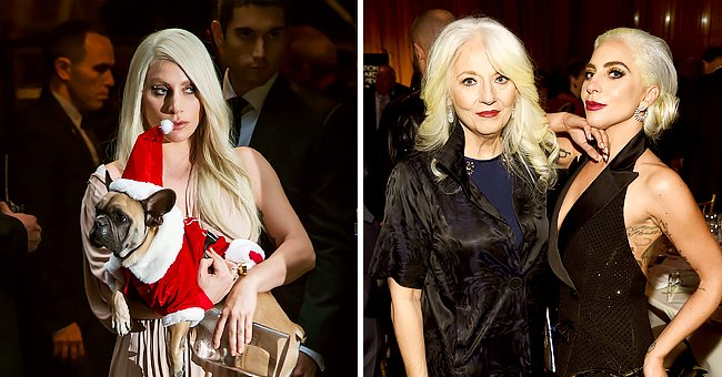 Lady Gaga's Mom Cynthia on How Her Daughter Is Coping after Dealing with Recent Dognapping