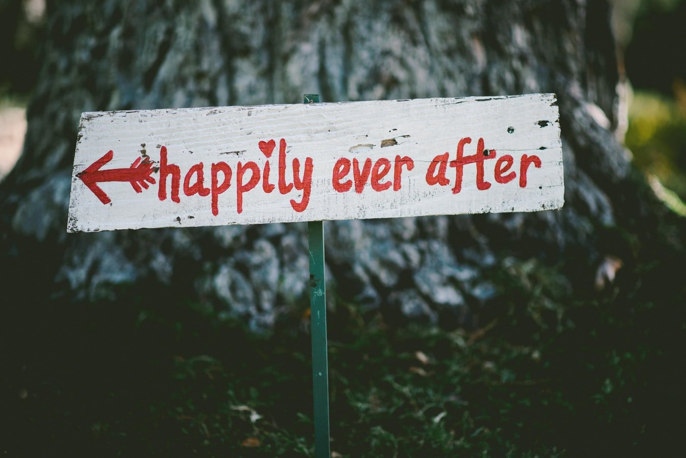 Happily ever after | Source: Unsplash