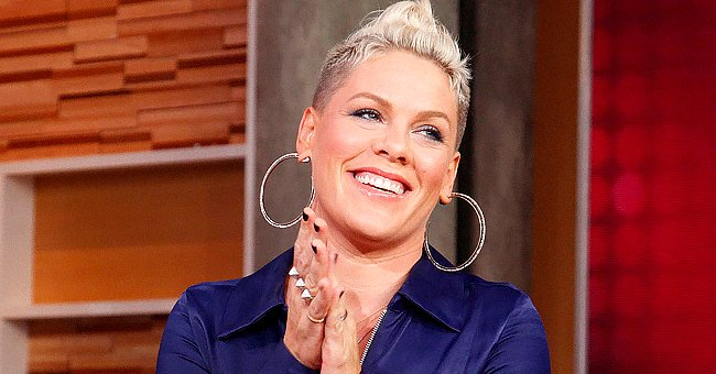 Pink Encourages Fans to Adopt Pets as She Introduces Her Family's New Puppy in a Sweet Photo