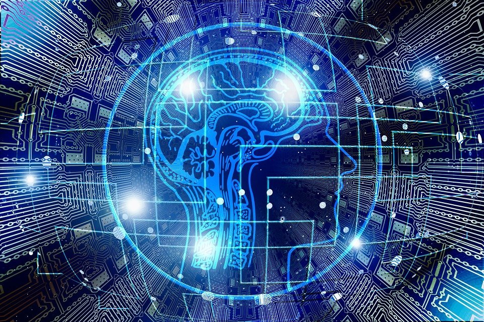 Bild eines Gehirns | Quelle: Pixabay