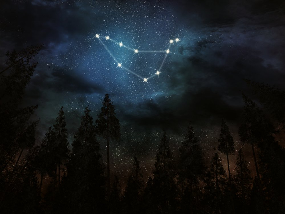 An illustration of the Capricorn constellation in the night sky | Source: Shutterstock