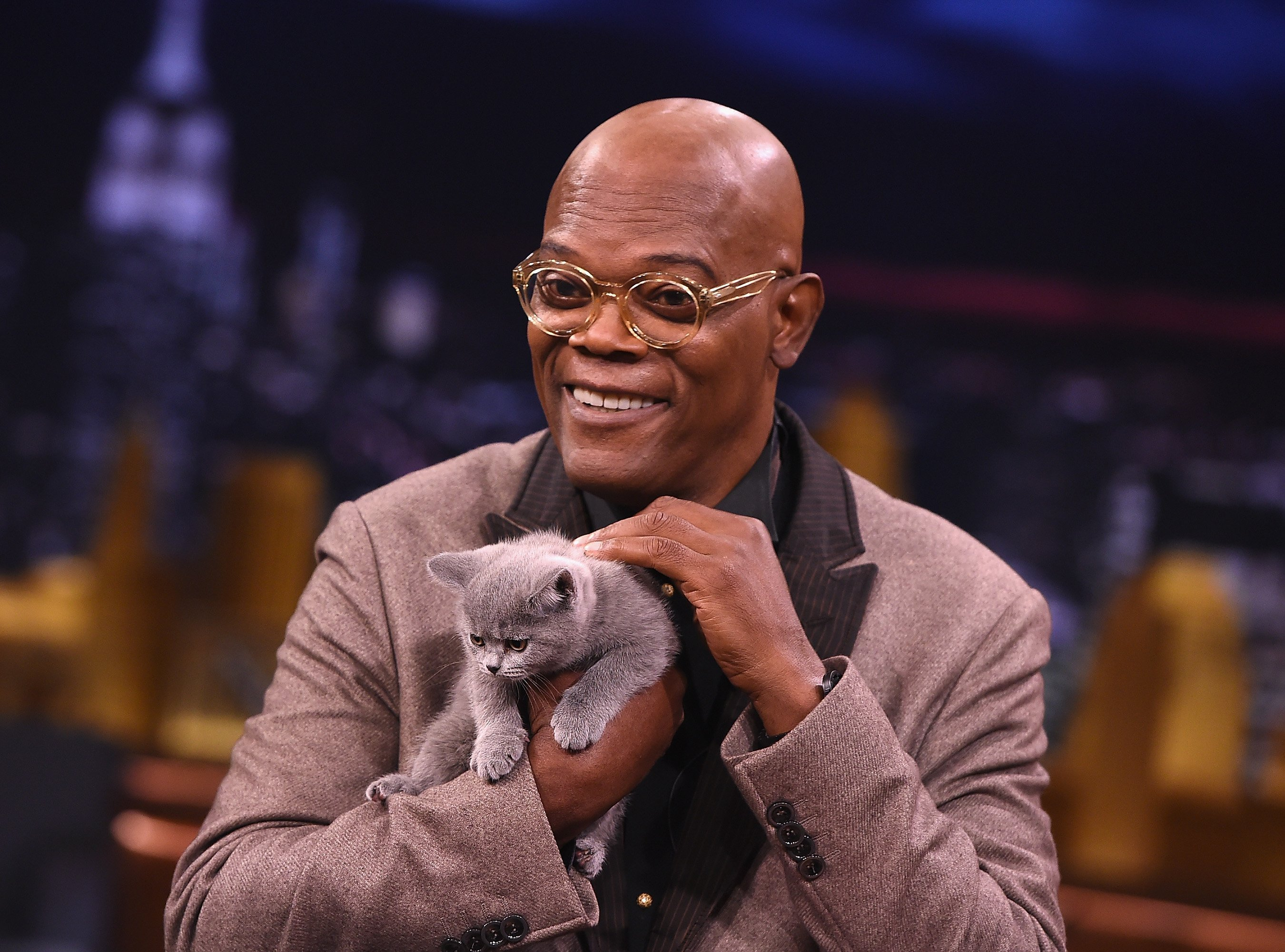 Samuel L Jackson holding a cat | Photo: Getty Images