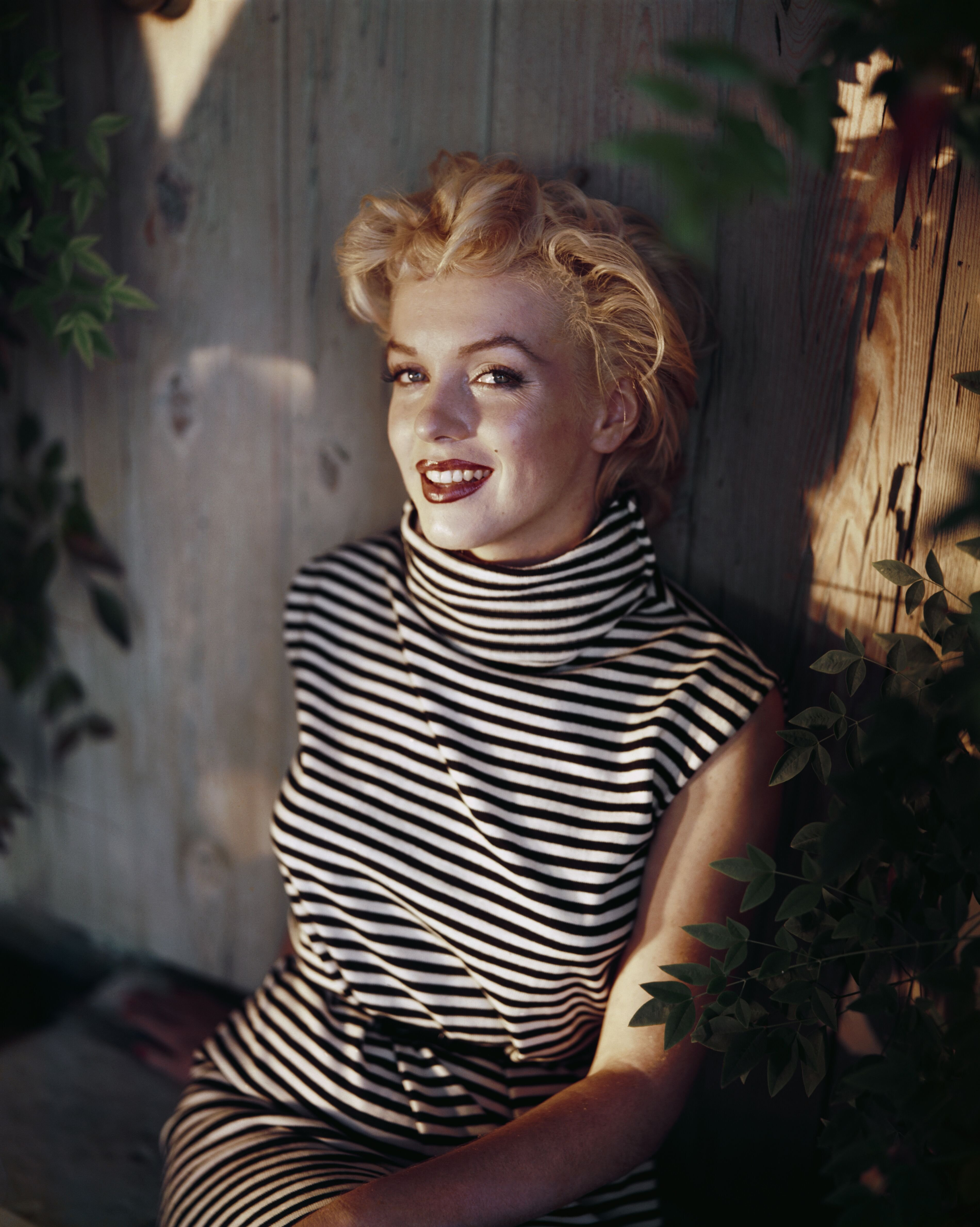 Marilyn Monroe poses for a portrait shortly before her death in 1962 | Source: Getty Image