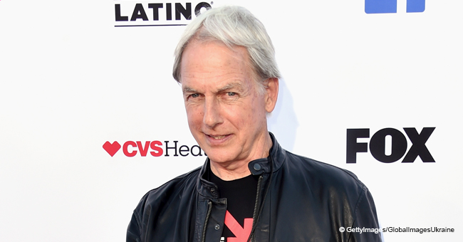 Mark Harmon Thanks NCIS Fans with Just a Few Words in an Emotional Video Message