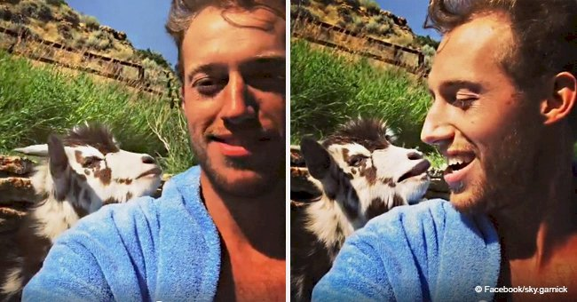 Viral video of guy arguing with sassy goat still makes people laugh