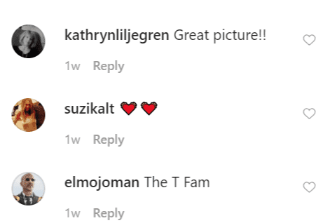 More fan comments on Nicky's post | Instagram: @trebeklife