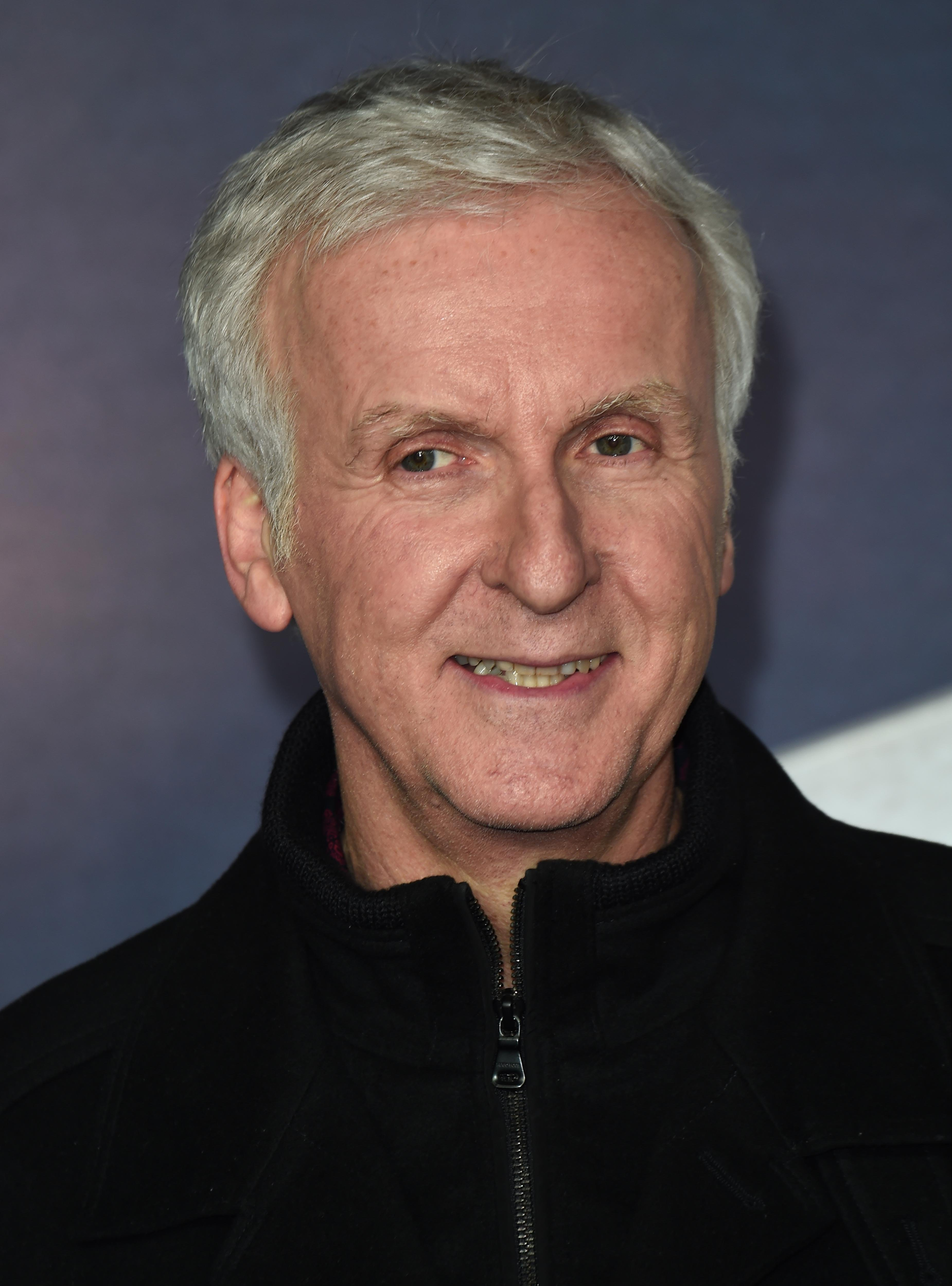"""James Cameron attends the """"Alita: Battle Angel"""" world premiere at the Odeon Leicester Square, Luxe Cinema on January 31, 2019. 