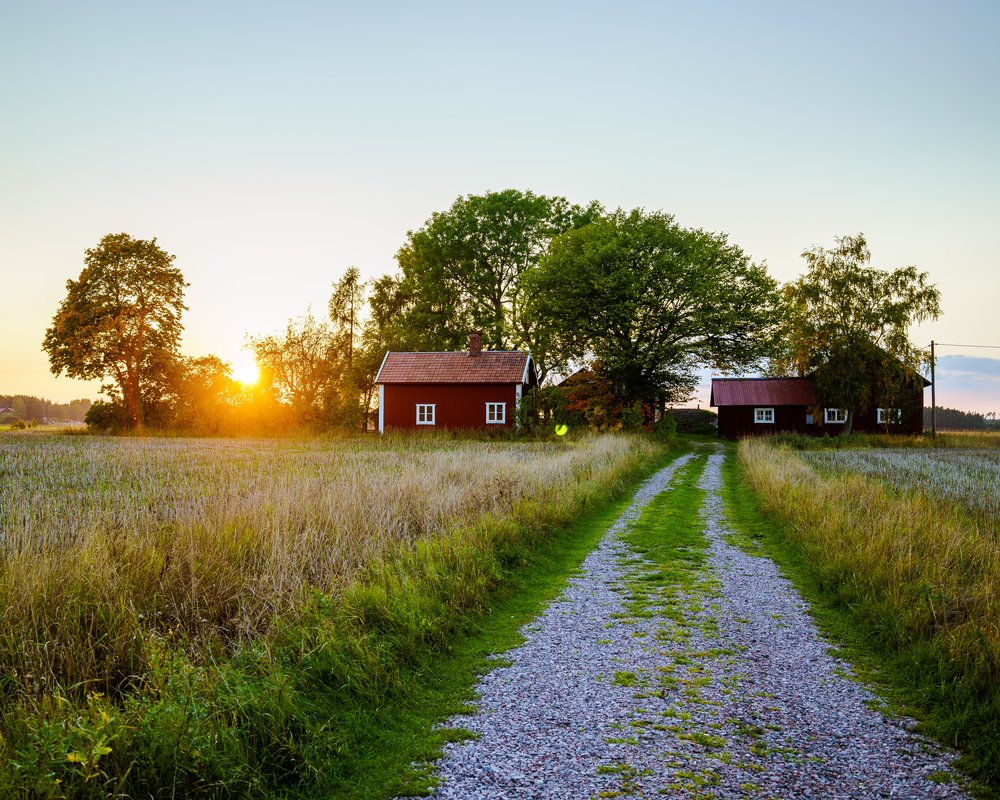 A road leading to a farmhouse | Photo: Shutterstock/Anton backsholm