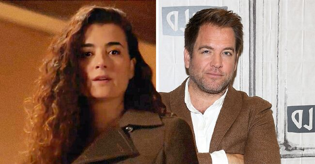NCIS Fans Want Michael Weatherly Back on the Show after Ziva's Long-Expected Return