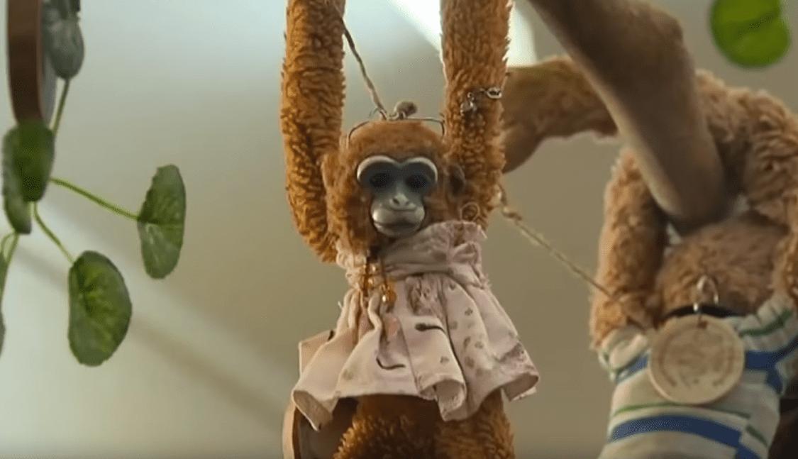 Harriet, le singe en peluche de Savannah Hart.|Image: YouTube / Inside Edition