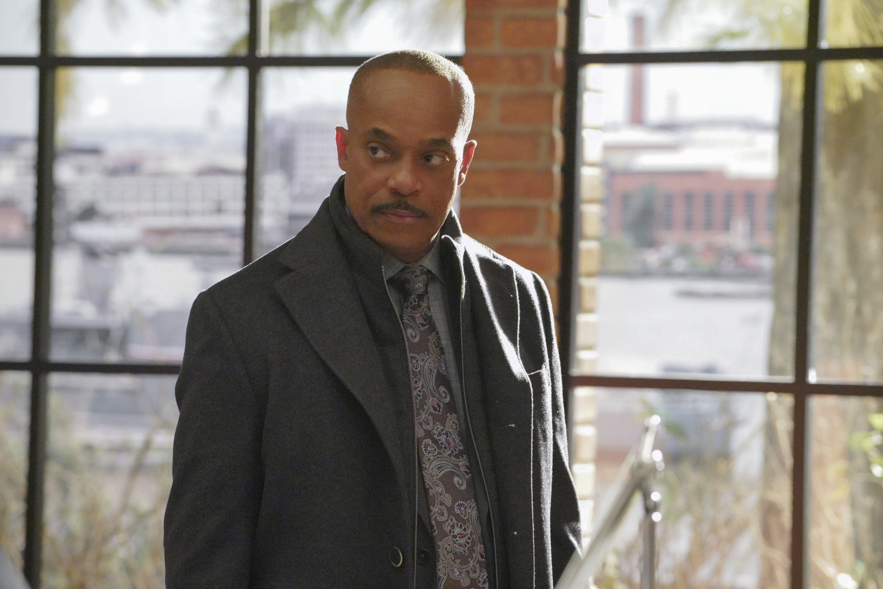 "Rocky Carroll as  Director Leon Vance ""NCIS,"" season 15 