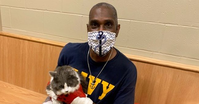 Man Found His Lost Cat When He Came to a Shelter to Pick up a New Pet after It Disappeared