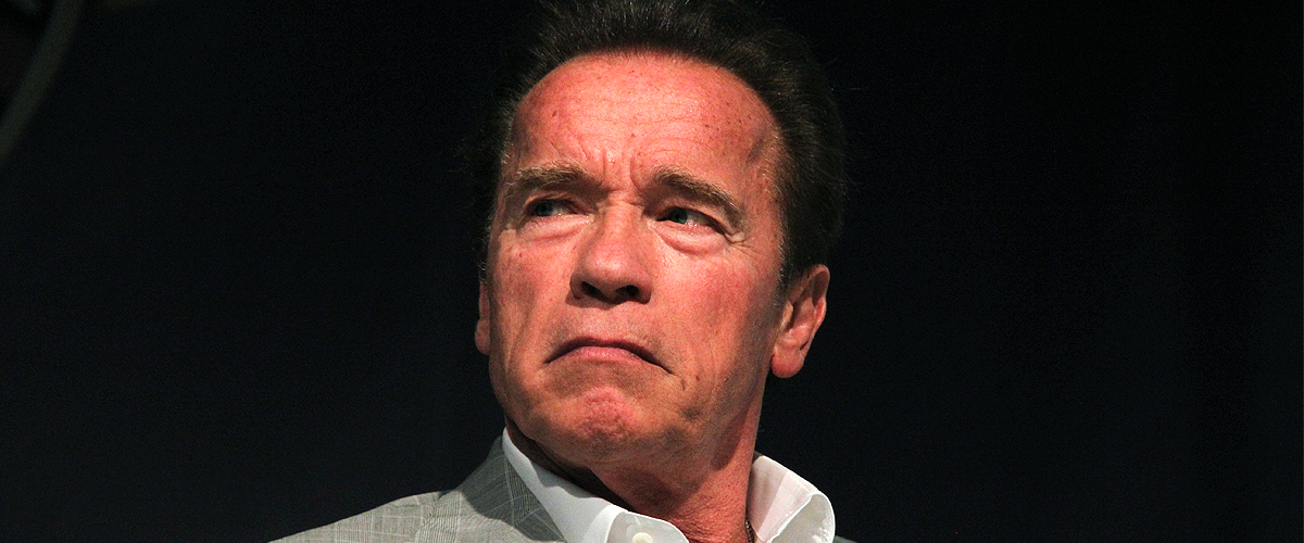 Arnold Schwarzenegger Attacked during His Visit to South Africa